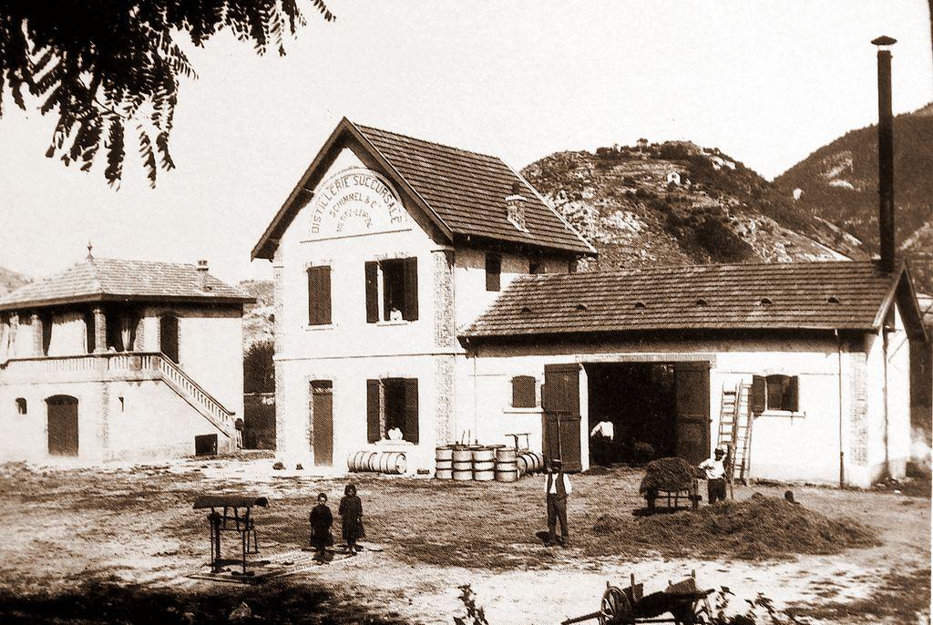 http://www.barreme.fr/mediatheque/distillerie1.jpg