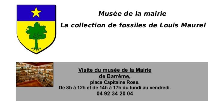 http://www.barreme.fr/mediatheque/musee1.jpg
